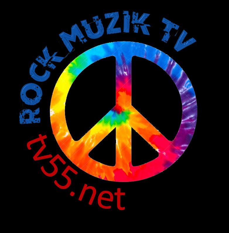tv55net